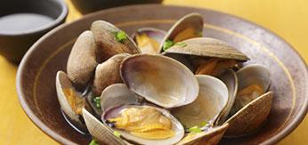 貝類・蟹類・加工品イメージ